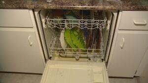 dishwasher at Langara Gardens