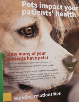 Therapy pets brochure