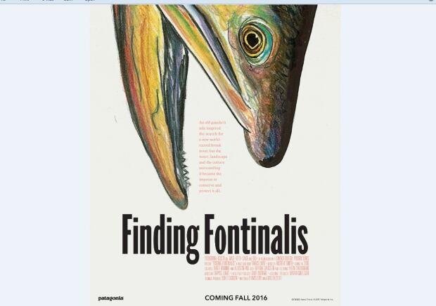 Finding Fontinalis