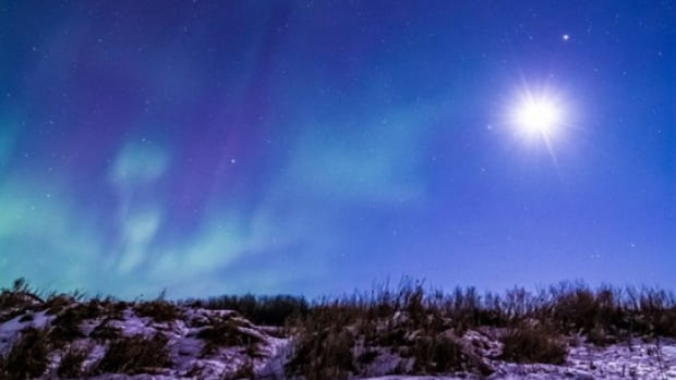 Blair Knox took this photo of the aurora lighting a coyote's den.