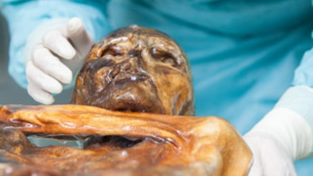 The Iceman, also known as Otzi, is a mummified corpse that was discovered in 1991 by two German hikers in the Italian Alps, near the border of Austria.