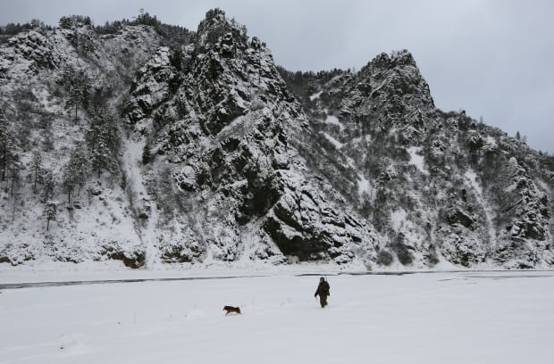 Cryophile swimmers in Siberia also hunt Dec 1 2015