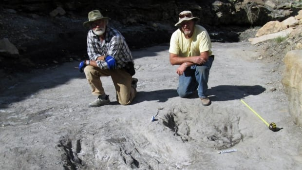 University of Colorado Denver researcher Martin Lockley (right) and Ken Cart pose beside a large dinosaur scrape they discovered in Western Colorado.