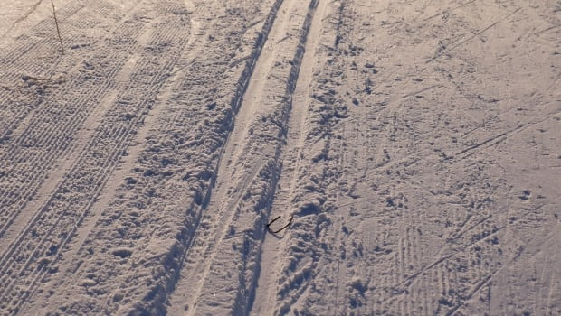 Cross country ski tracks