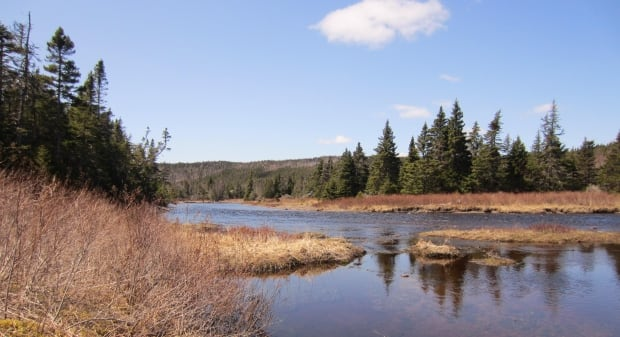 Salmonier River project NCC