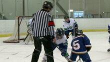 Minor Hockey concussions