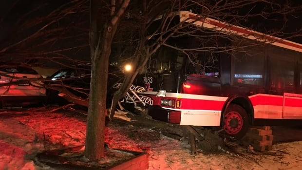 The bus hit the tree on Lawrence Avenue East shortly after 7 p.m. Sunday.