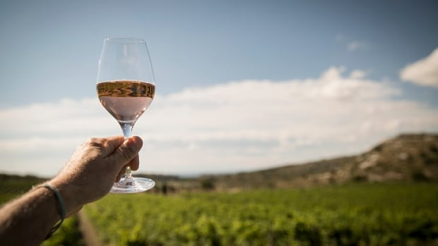 On The Coast's wine columnist, Barbara Philip, says wine from the Languedoc region of France has unique characteristics.