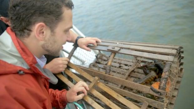 Chef Carl Heinrich hauling lobster traps