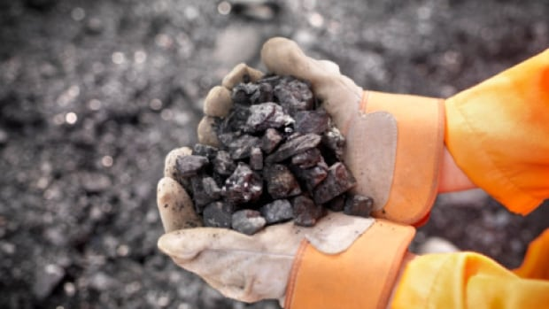 The last working coal mine on Vancouver Island has halted production indefinitely due to flagging sales and a soft international market.
