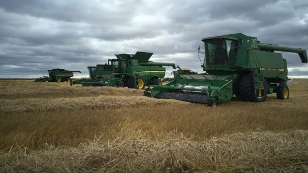 Farmers near Spalding, Saskatchewan harvest their crop for 2015.