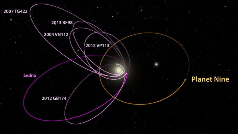 this diagram shows planet 9's predicted orbit (in orange), next to the  orbits of the six most distant known objects in the solar system (in pink)  and