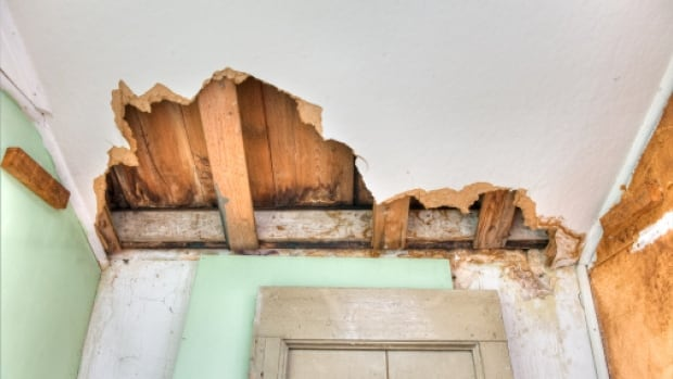 If the roof of your strata property needed immediate repair, would your contingency fund be able to cover it?