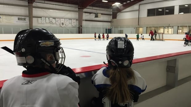 Plans to expand Fort McMurray's hockey ice surfaces are on hold.