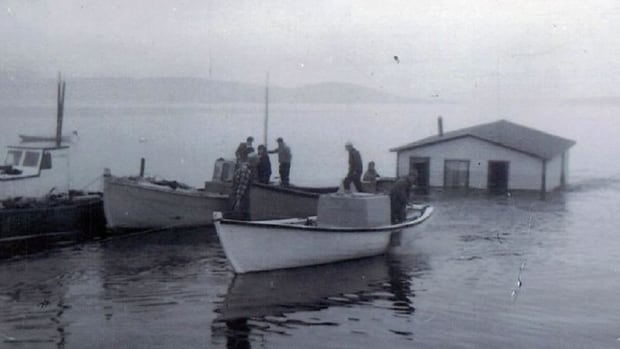 As part of the government's resettlement program, people moved from communities like Woody Island, Harbour Buffett, Kingwell, Spencer's Cove and other communities from Placentia Bay Islands into Arnold's Cove.