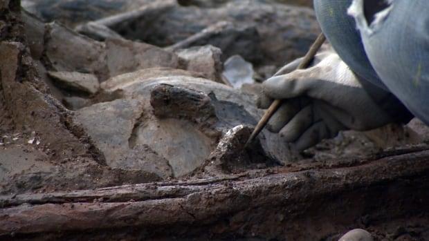 Bronze age pot cleared
