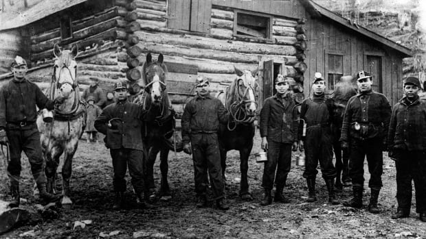 A group of coal miners with their horses used to pull coal cards at Hillcrest, Alta. in 1920. In Canada, coal has been mined since 1639.