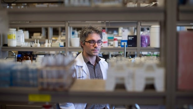 Professor Andrew MacIntosh, a member of the Canadian Institute of Fermentation Technology at Dalhousie University, works in his lab at the university in Halifax on Wednesday.