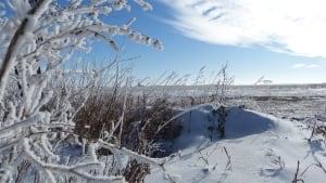 Regina Bypass land