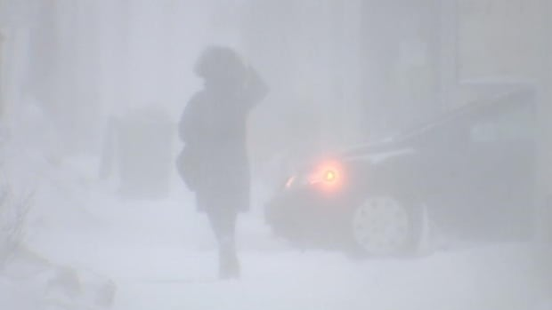 Environment Canada says a low pressure system will bring high winds and plenty of snow for most of Nova Scotia on Monday night.