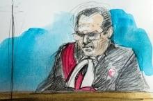Justice Andrew Goodman