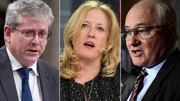 New Democrat Charlie Angus, left, Conservative Lisa Raitt and Liberal Wayne Easter are among the veteran MPs who will sit on standing committees of the House of Commons. The committee membership lists were published Friday.