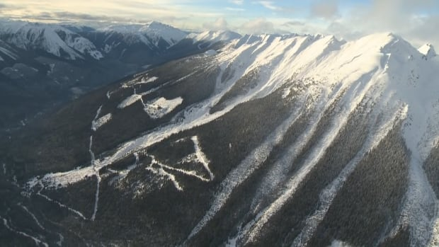 An aerial photo, taken on Saturday Jan. 30, of the mountain range where five snowmobilers died in a 'very large' avalanche near the Interior community of McBride, B.C., on Friday.