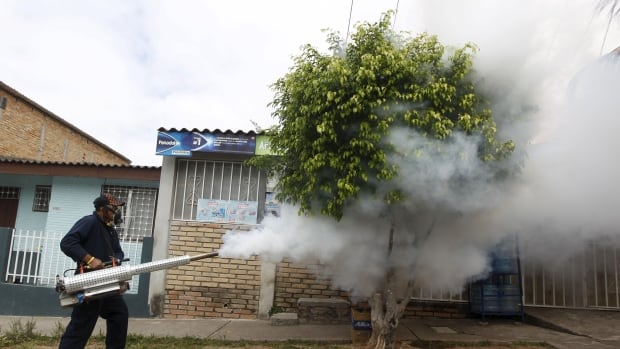 A municipal health worker in Tegucigalpa, Honduras fumigates on a street Saturday as part of the city's efforts to prevent the spread of the Zika virus.