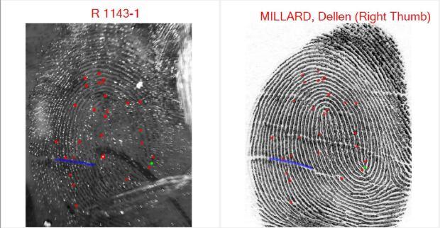 Millard Fingerprints