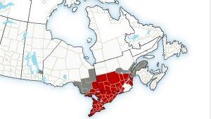 EC weather warnings