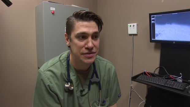 Veterinarian Gared Cantin looks after dog shot with arrow