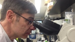 Dr. Mark Loeb