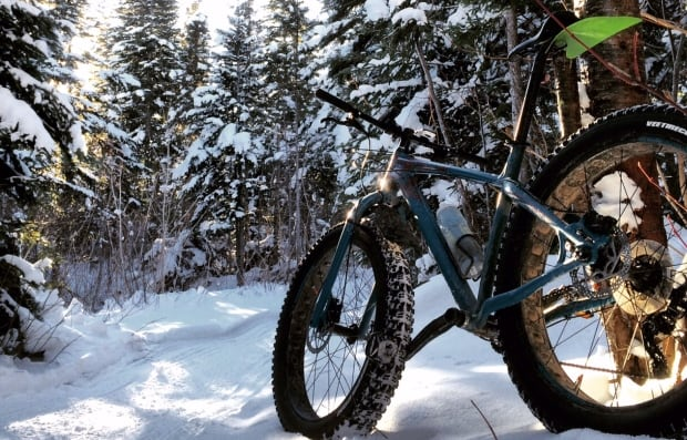 Fat bike in woods snow