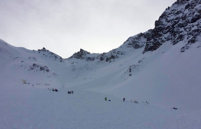 Austria avalanche sweeps away 17, killing 5