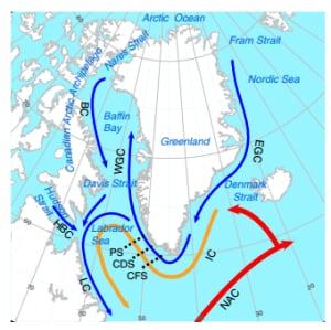 Ocean circulation graphic