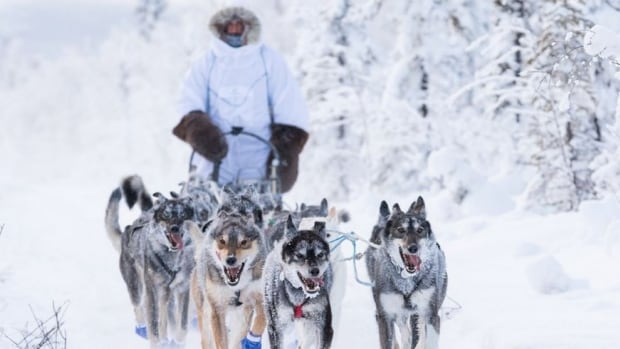 Twenty-two mushers are still in the race as of Monday.