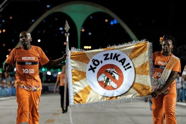 Brazil Carnival Zika