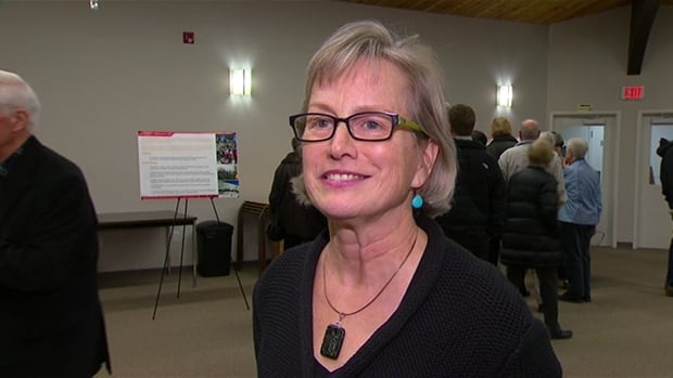 University architect Jane Ferrabee, says the long range development plan will guide campus construction for the next 30 years once approved.