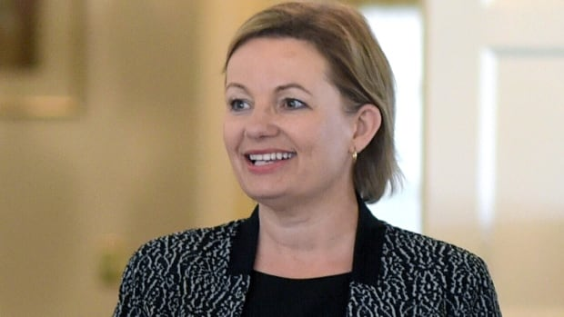 Health Minister Sussan Ley said the government wanted to enable Australians