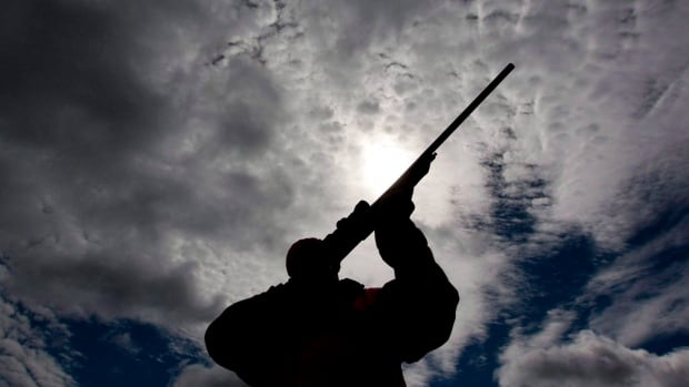 A rifle owner checks the sight of his rifle at a hunting camp property in rural Ontario, west of Ottawa, on Wednesday Sept. 15, 2010. The Liberal government has broken a promise to immediately implement firearm-marking regulations to help police trace guns used in crime.