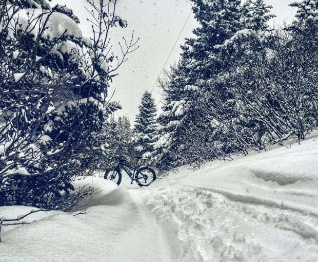 Fat bike on a Corner Brook trail