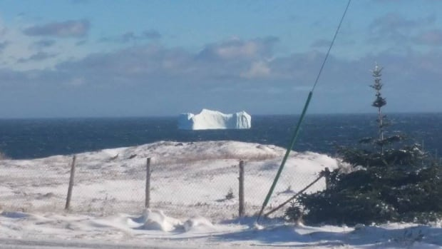 Iceberg, Job's Cove, Feb. 10