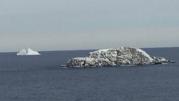This weekend, an iceberg was spotted off Bonavista.