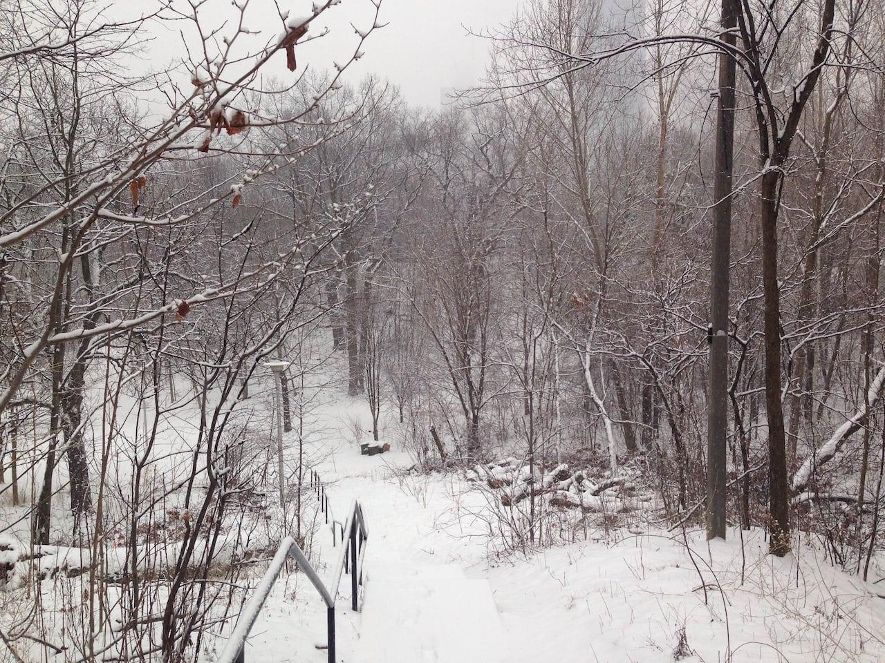 Toronto weather: Tuesday, Feb  16, 2016 | CBC News