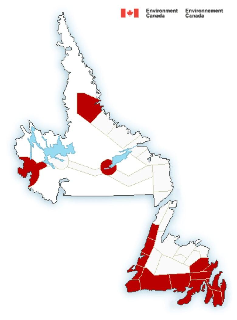 Wind, rain warnings for Newfoundland, snow heading for Labrador ...