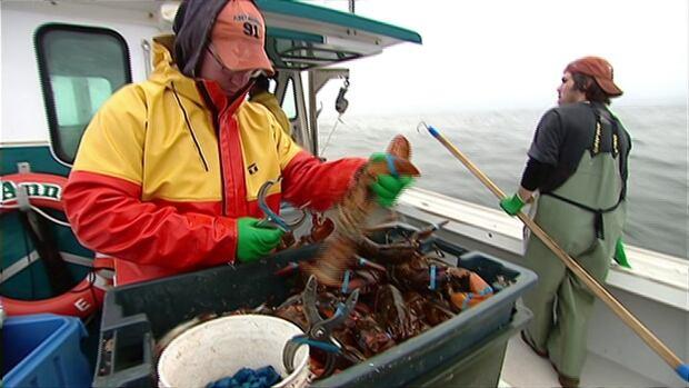 hi-lobster-crew