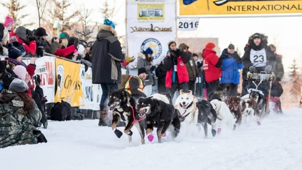 French musher Sebastien Dos Santos Borges begins the 2016 Yukon Quest race in Fairbanks, Alaska, Feb. 6 with his sled dog team. One of Dos Santos Borges' dogs died Wednesday.