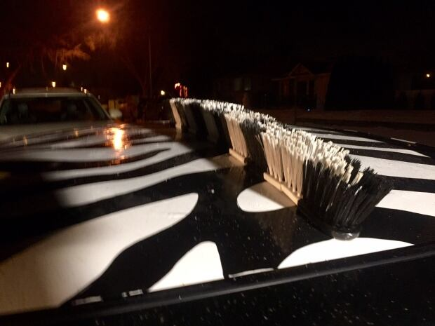 zebra car 6