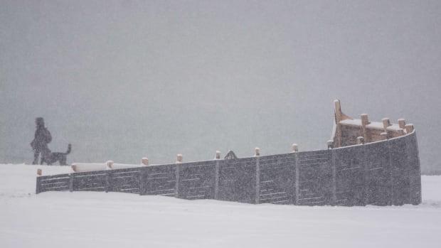 winter stations douglas cardinal