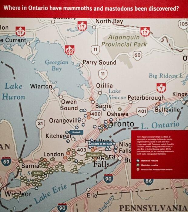 Mastadon map